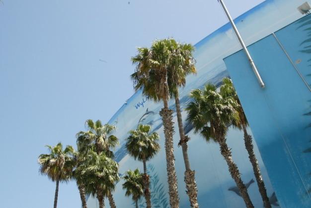 West Coast, Best Coast! Photo via INDYCAR