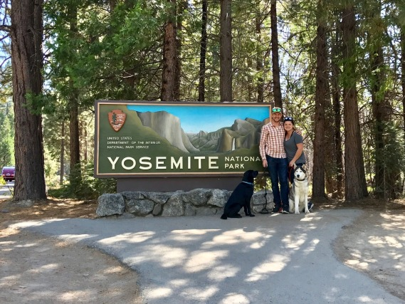 After the Checkered: Yosemite